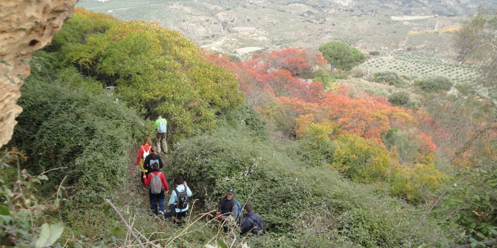 Los Zumaques, ruta en la naturaleza en la Sierra Sur