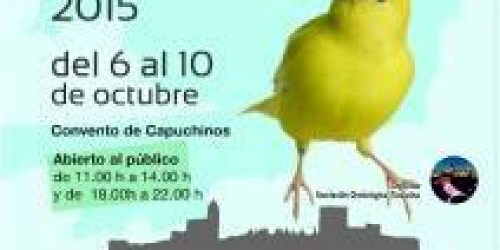 Exposición del 6 al 10 de Octubre en Alcalá la Real