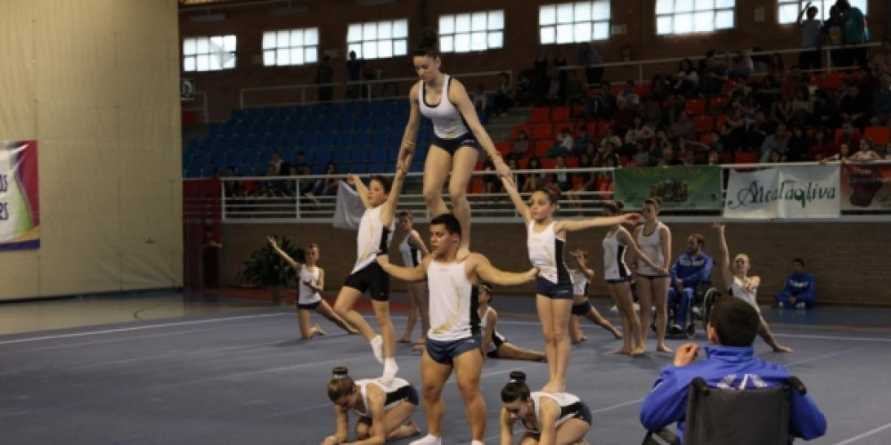 Exhibición de gimnastas locales y foráneos en la IV Copa Enequipo