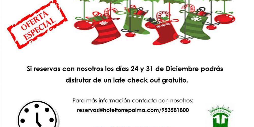 Oferta navidad Hotel Torrepalma