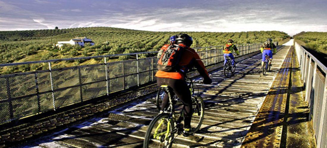 Ruta en bici por la Vía verde del Aceite, Jaén